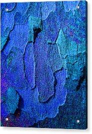 Winter London Plane Tree Abstract 4 Acrylic Print by Margaret Saheed