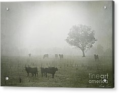 Winter Morning Londrigan 5 Acrylic Print by Linda Lees