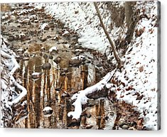 Winter - Natures Harmony Acrylic Print by Mike Savad