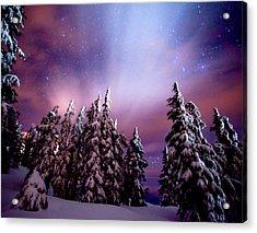 Winter Nights Acrylic Print by Darren  White