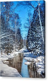 Winter Perfection Acrylic Print by Gary Gish