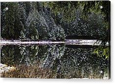 Winter Reflection Acrylic Print by Timothy Latta