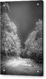 Winter Road Acrylic Print by John Haldane