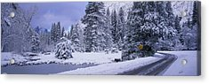 Winter Road, Yosemite Park, California Acrylic Print by Panoramic Images