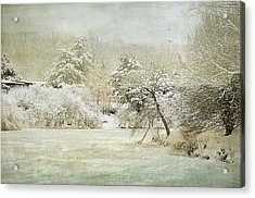 Winter Silence Acrylic Print by Julie Palencia