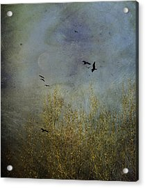 Winter Song Acrylic Print by Diane Schuster