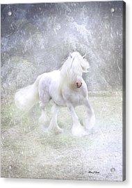 Winter Spirit Acrylic Print by Fran J Scott