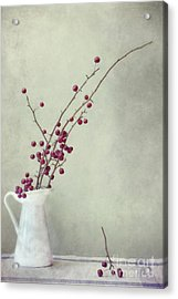Winter Still Life Acrylic Print by Priska Wettstein