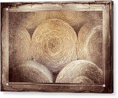 Winter Storehouse Acrylic Print by Carolyn Marshall