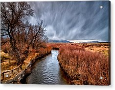 Winter Storm Over Owens River Acrylic Print by Cat Connor