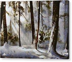 Winter Sun Acrylic Print by Gun Legler