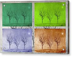 Winter Trees  Acrylic Print by David Dehner