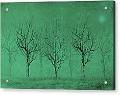 Winter Trees In The Mist Acrylic Print by David Dehner