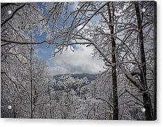 Winter Window Wonder Acrylic Print by John Haldane
