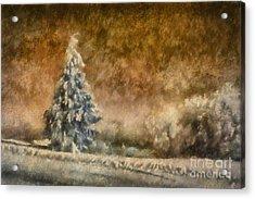 Winter Wonder Acrylic Print by Lois Bryan