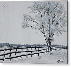 Winter Wonderland Acrylic Print by Melissa Torres