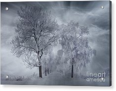 Winter's Magic Acrylic Print by Veikko Suikkanen