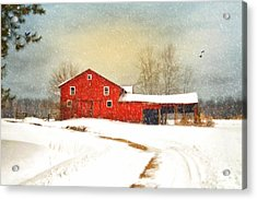 Winters Morning Acrylic Print by Mary Timman