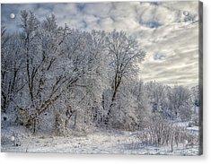 Wisconsin Winter Acrylic Print by Joan Carroll