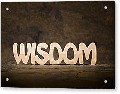 Wisdom Acrylic Print by Donald  Erickson