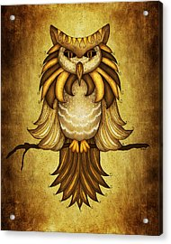 Wise Owl Acrylic Print by Brenda Bryant