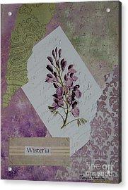 Wisteria Acrylic Print by Tamyra Crossley