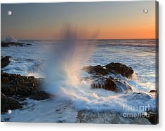 With Force Acrylic Print by Mike  Dawson