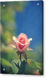 With Love Always Acrylic Print by Laurie Search