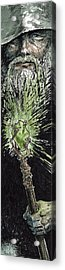 Wizard Acrylic Print by Sean Seal