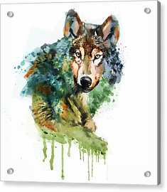 Wolf Face Watercolor Acrylic Print by Marian Voicu