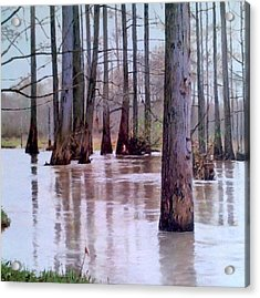 Wolf River Near Moscow Tennessee Acrylic Print by Mike DeWitt