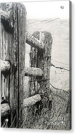 Wood And Wire Acrylic Print by Jackie Mestrom