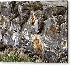 Wood Pile -  Fine Art  Photograph Acrylic Print by Ann Powell