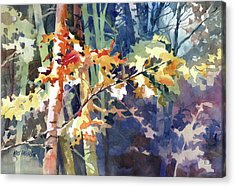 Wood Song Acrylic Print by Kris Parins