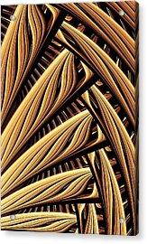 Wood Weaving Acrylic Print by Anastasiya Malakhova