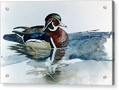 Woodie Acrylic Print by Lynne Parker
