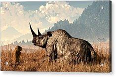 Woolly Rhino And A Marmot Acrylic Print by Daniel Eskridge