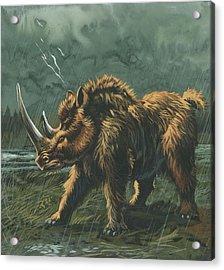 Woolly Rhinoceros Acrylic Print by Deagostini/uig