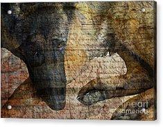Wordless Acrylic Print by Judy Wood