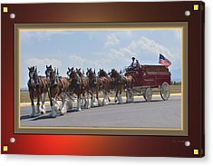 World Renown Clydesdales Acrylic Print by Kae Cheatham