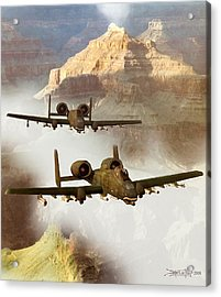 Wrath Of The Warthog Acrylic Print by Dieter Carlton