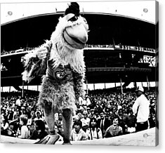 Wrigley Field Chickenman  Acrylic Print by Retro Images Archive