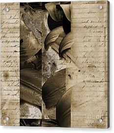 Written II Acrylic Print by Yanni Theodorou