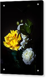 Yellow And White Acrylic Print by Cecil Fuselier