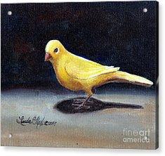 Yellow Bird Acrylic Print by Linda L Martin