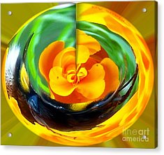 Yellow Blossem Acrylic Print by Gabriele Mueller