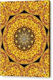 Yellow Burst  Acrylic Print by Annette Allman