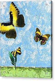 Yellow Butterflies - Spring Art By Sharon Cummings Acrylic Print by Sharon Cummings