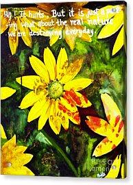 Yellow Daisies Acrylic Print by Mukta Gupta