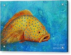 Yellow Fish  Acrylic Print by Gabriela Valencia